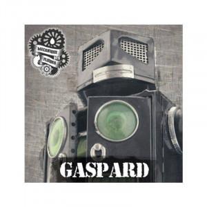 Gaspard - La Mécanique des Fluides